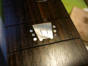rama guitars mostrino2